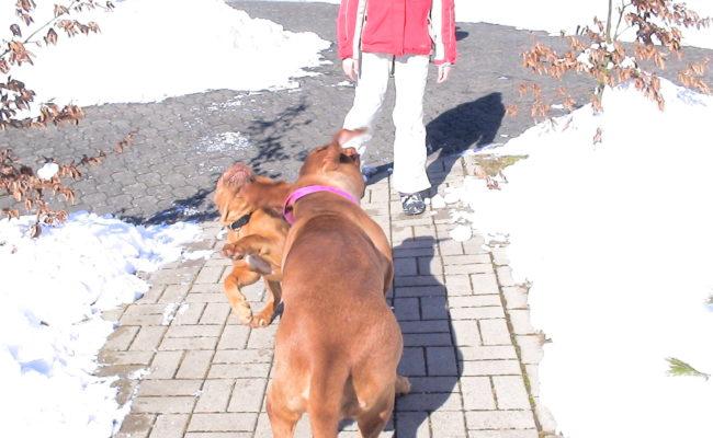 mama-und-papa-zu-besuch-5-03-7-03-2010-27