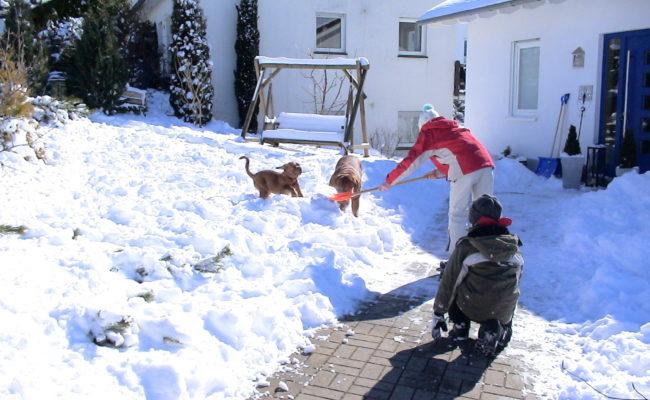 mama-und-papa-zu-besuch-5-03-7-03-2010-28