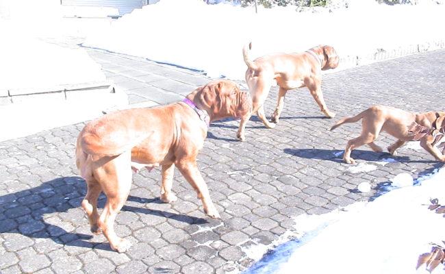 mama-und-papa-zu-besuch-5-03-7-03-2010-29